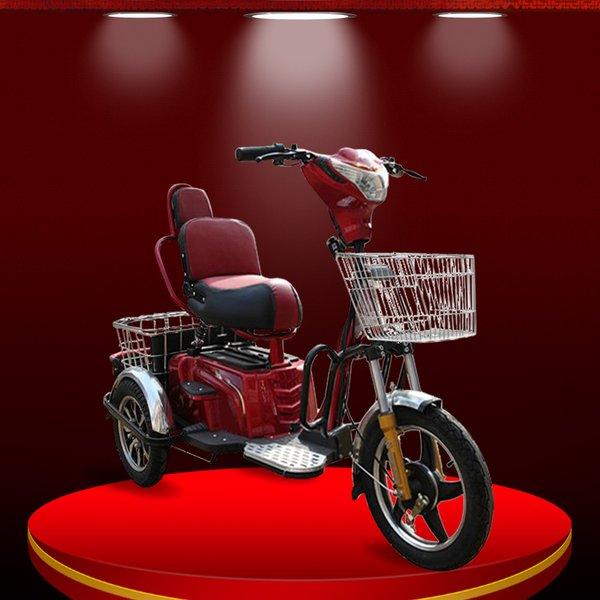Xe moto điện 3 bánh- giải pháp di chuyển cho những người khuyết tật