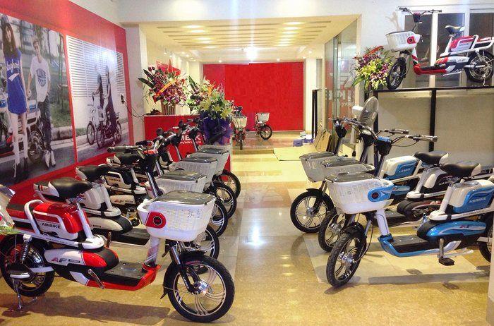 Xe đạp điện đa dạng về chủng loại, giá thành