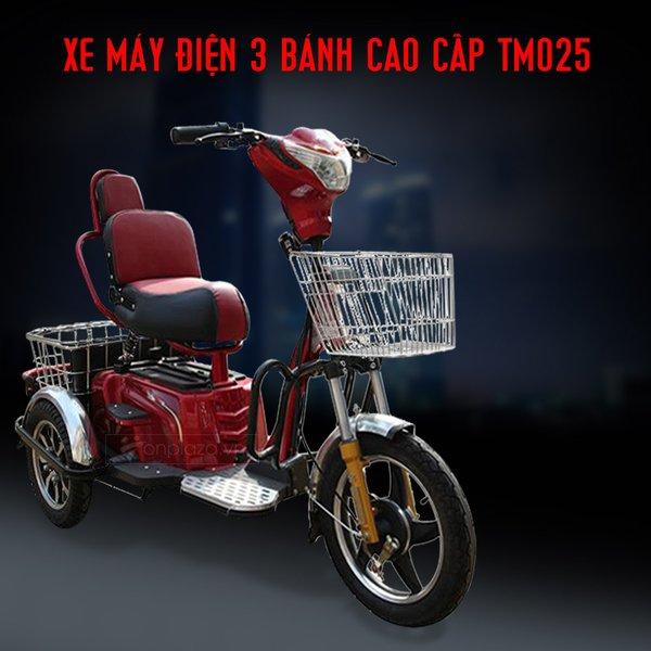 xe moto điện 3 bánh thích hợp cho người khuyết tật